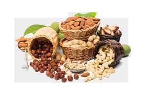 horeca groothandel noten en gedroogdfruit